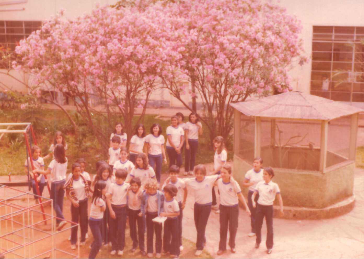 Colégio Arnaldo Unidade Anchieta celebra 53 anos